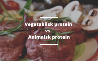 Animalske proteiner vs. vegetabilske proteiner